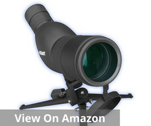 Best spotting scope for the money top for